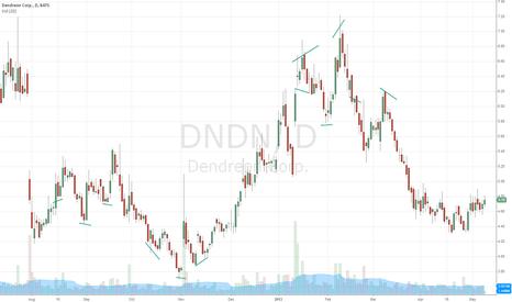 DNDN: HEAD & SHOULDERS