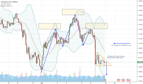 USDSGD: USDSGD bearish flag