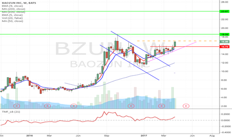 BZUN: BZUN - Flag formation Long from $17 up to $23.87
