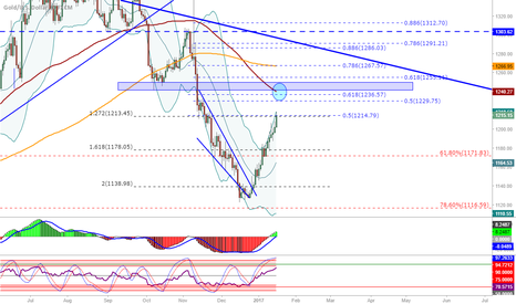XAUUSD: XAU/USG (Gold): Daily getting to possible resistace area