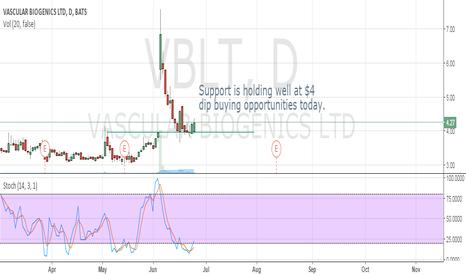 VBLT: Dip Buying VBLT