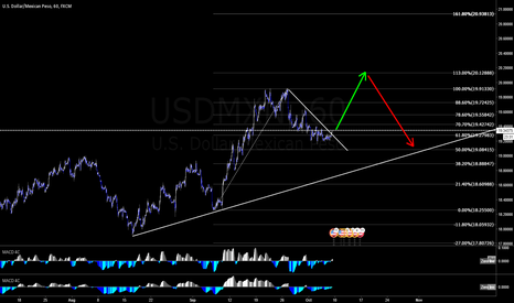 USDMXN: PESO, possible movement