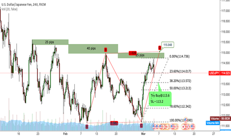 USDJPY: USDJPY Try Buy@113.6