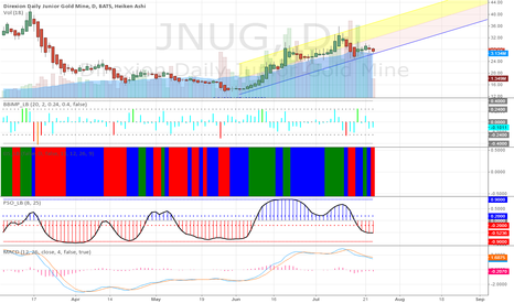 JNUG: JNUG Setting up for a Move Up?
