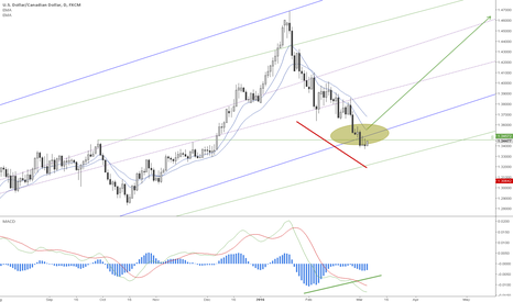 USDCAD: A Bullish Divergence with MACD