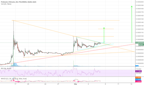 PINKBTC: PINK Coin ready for greenlight to go, Double flag position.