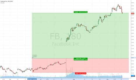 FB: Trade  4.1 - 16.9 2013