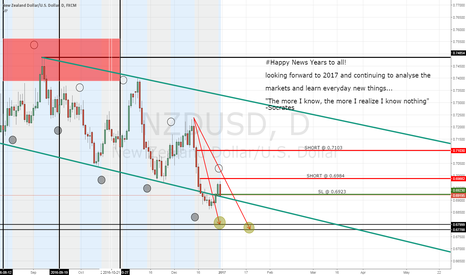 NZDUSD: Happy New Years to all!