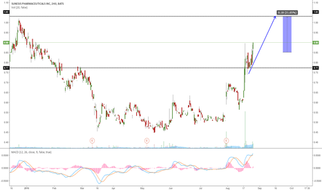 SNSS: SNSS GOING FOR ONE MORE WAVE UP?