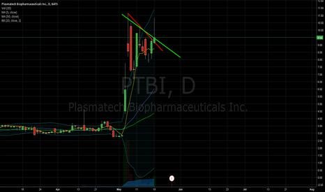 PTBI: PTBI - Potential downside