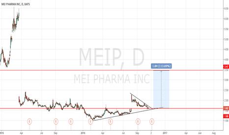 MEIP: MEIP