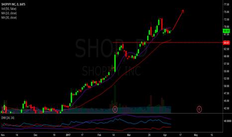 SHOP: long swing  - shopify