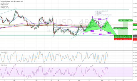 EURUSD: Butterfly Pattern in range-bound market