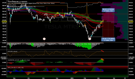 TSLA: 235 - 150 Option Strangle