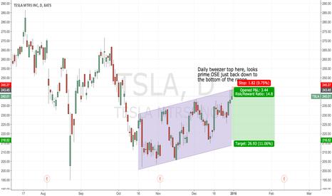TSLA: $TSLA Short Scalp