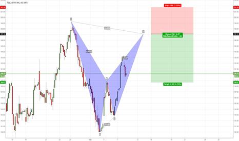 TSLA: TESLA bearish bat pattern
