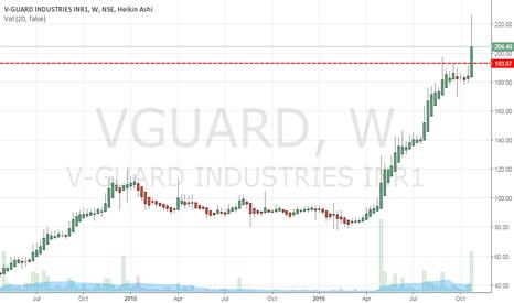 VGUARD: Will the momentum in V-Guard continue?