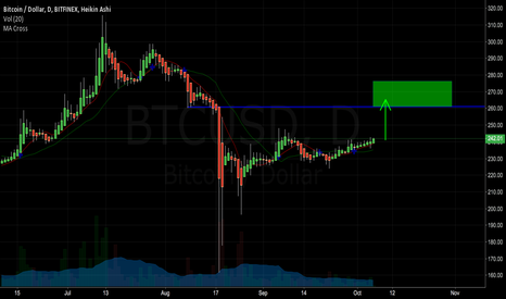 BTCUSD: BTC Long on relatively good new. 260 before November 5th.