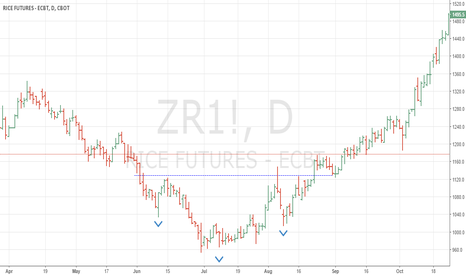 ZR1!: Inverted H&S in Rough Rice