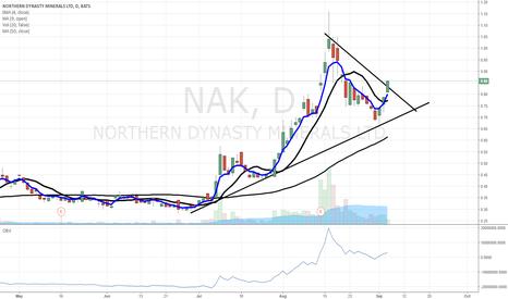 NAK: $NAK buy buy buy
