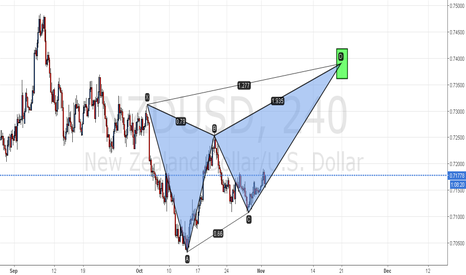 NZDUSD: NZD USD  start butterfly pattern