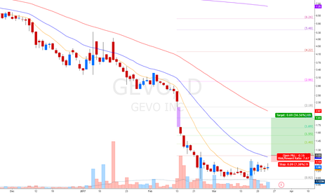 GEVO: nice long term investment setup
