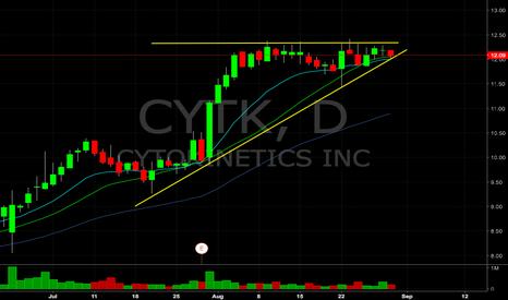 CYTK: $CYTK breakout watch tomorrow