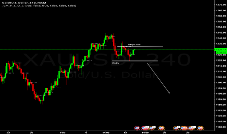 XAUUSD: Gold Entry On Low