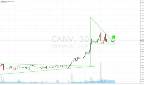 CANV: $CANV BULL PENNANT