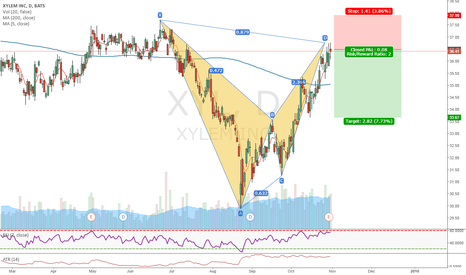 XYL: Nice BAT pattern on XYL (10)