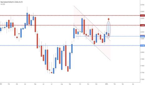NZDUSD: NZD/USD - Forecast for January 20-24 week