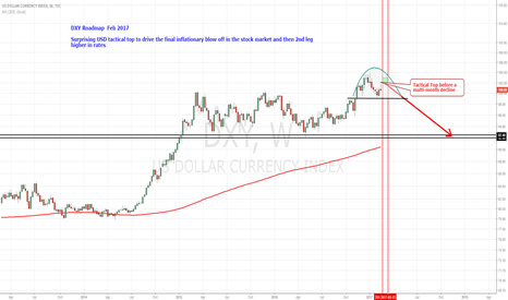 DXY: DXY Roadmap Feb 2017