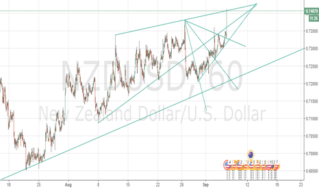NZDUSD: Please do not follow me. this is just what i see