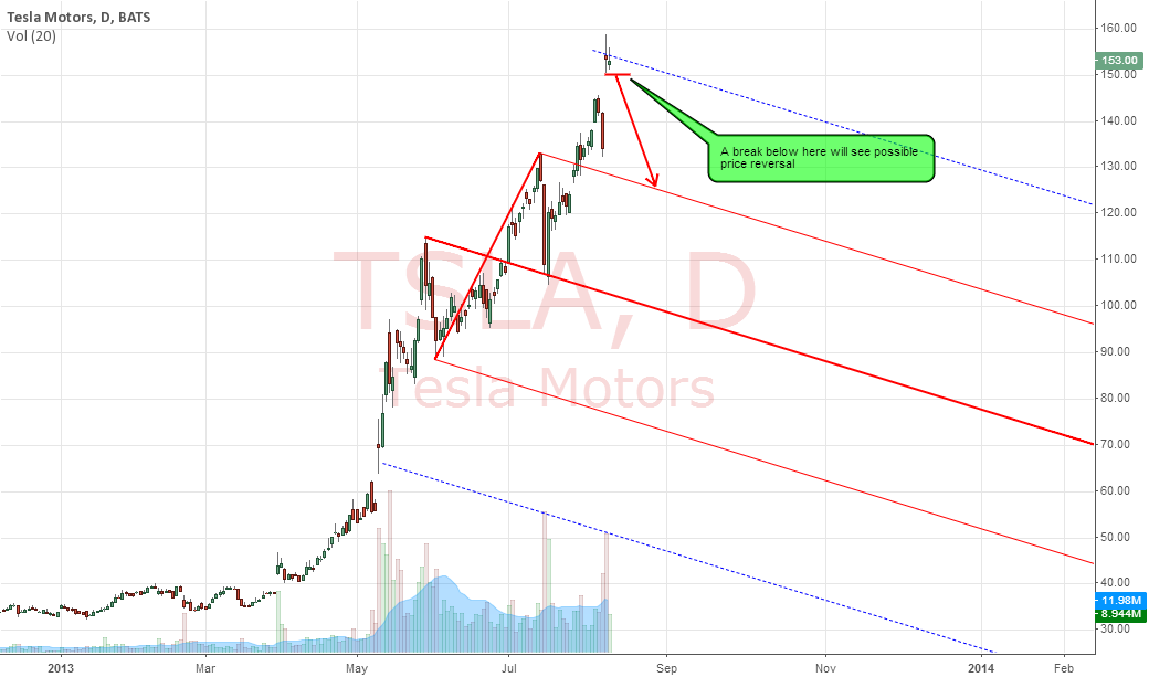 TESLA MOTORS : POSSIBLE REVERSAL