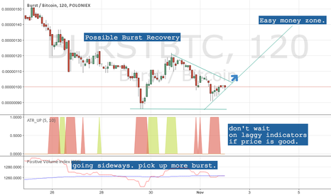 BURSTBTC: BURST possible recovery? BURSTBTC