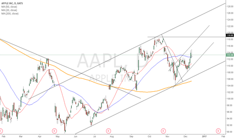 AAPL: Party Monster