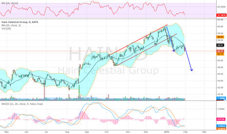 HAIN: Looking Bear Flag Breaky