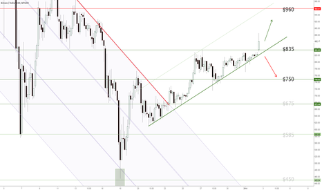 BTCUSD: BTC Update 2-3 Jan 2014