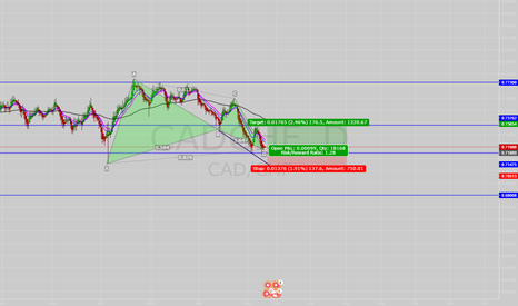 CADCHF: CADCHF going long