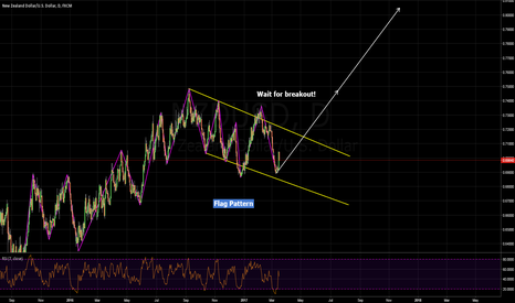 NZDUSD: flag pattern/wait for breakout!