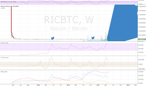 RICBTC: RIC