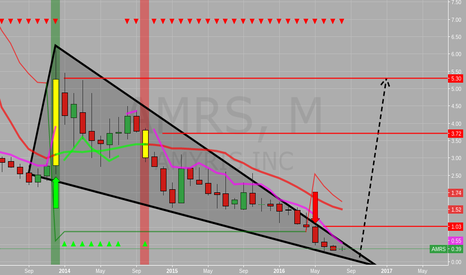 AMRS: Keep an eye out for this hidden gem for possible descending