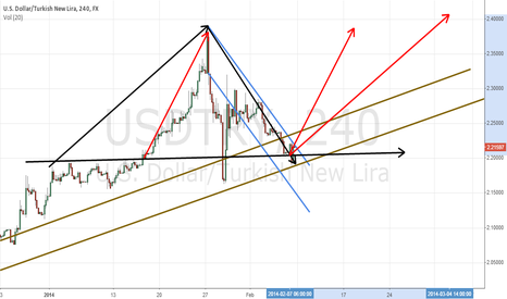 USDTRY: dolar new lira