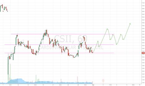 CSII: Prediction for CSII