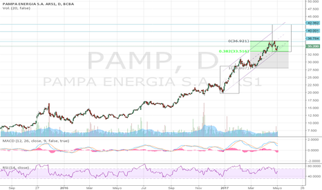 PAMP: Los cuyanos con gas en alza