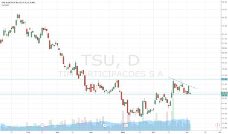 TSU: TSU flag
