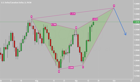 USDCAD: USD/CAD - Bearish Butterfly Forming