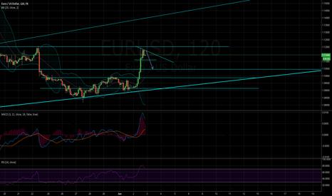 EURUSD: Short the top euro!