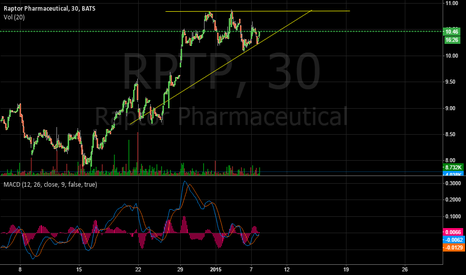 RPTP: RPTP, possible big breakout