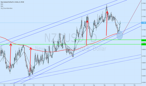 NZDUSD: Now I dont know